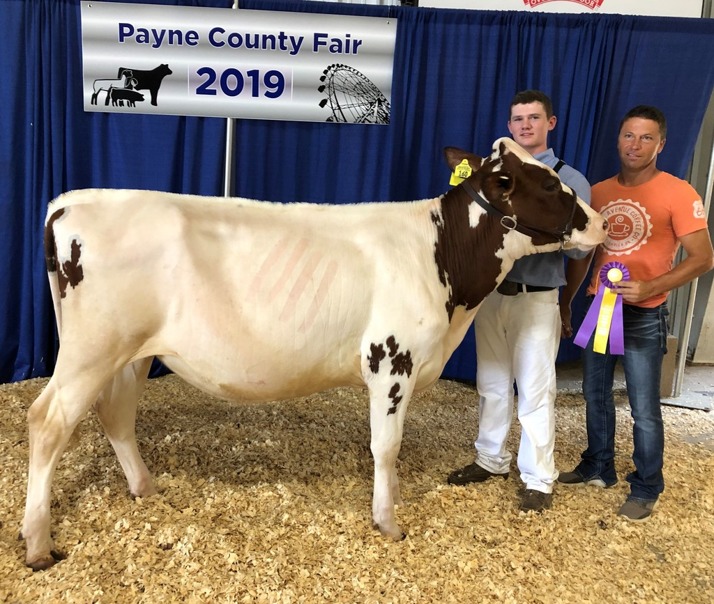 Kascen Humble Payne County Fair 2019 Supreme Champion Dairy Heifer